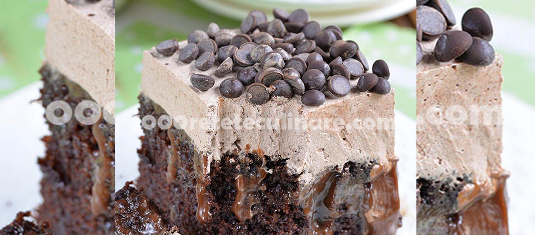 Prajitura imbibata in ciocolata